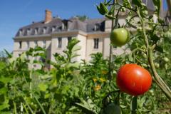 Château et potager en permaculture côté Sud.