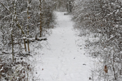 2019-01-22_campus_sous_la_neige_14
